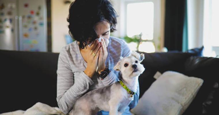 ¿Qué hacer si eres alérgico a los perros?